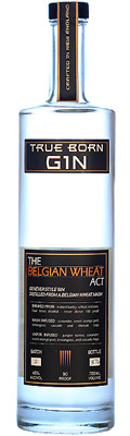United States - Best Contemporary Style Gin